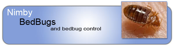 Toronto Bedbug Control - Heat Treatment