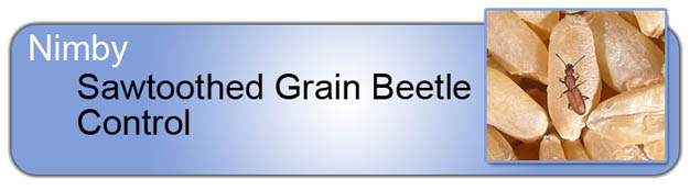 Sawtooth Grain_Beetle_Control_Header