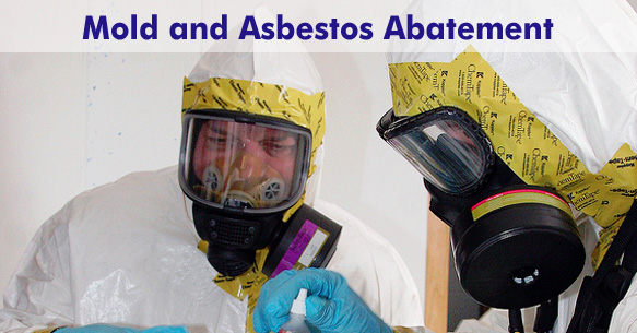 Mold and Asbestos Control and Removal